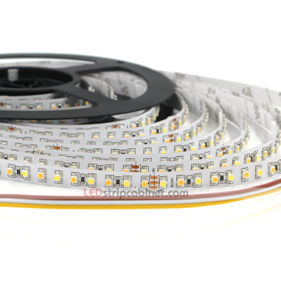 Color Temperature Changing 24V LED Strip Lights