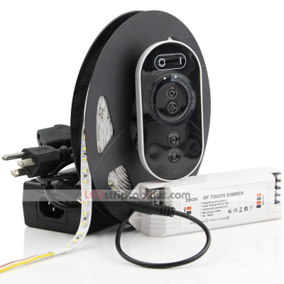 Color Temperature Changing 24V LED Strip with 36SMDs/ft Kit